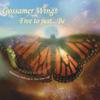 Gossamer Wings CD